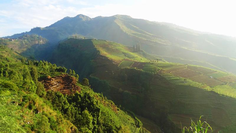 Dieng Plateau - Paysage