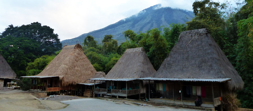 Bena Village - Bajawa